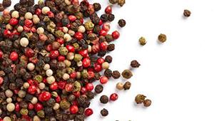 PACKINOV - Machine conditionnement RMD 814 épice poivre agroalimentaire